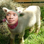 Why Women in Church are Called Sheep